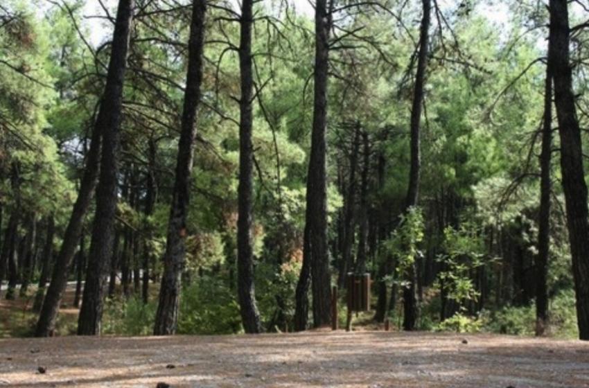 Παρατείνεται η απαγόρευση μετακίνησης σε δάση και άλση