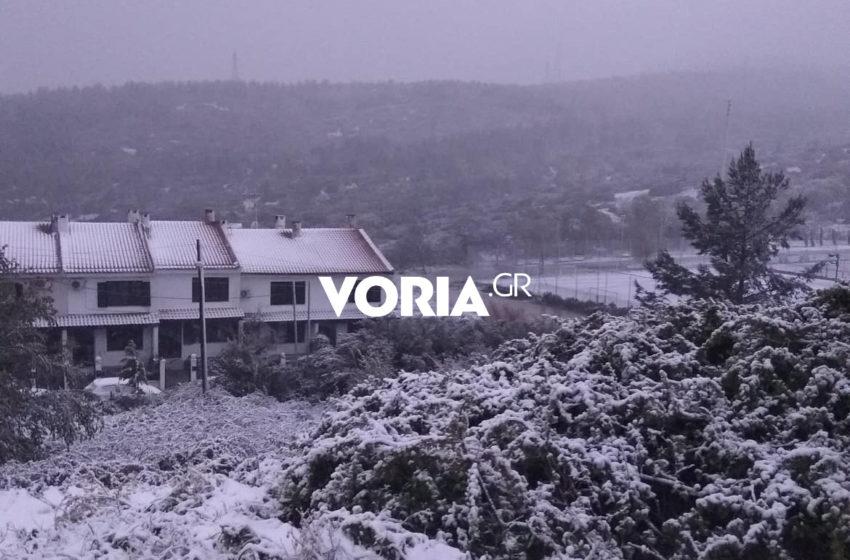 """Σε λευκό κλοιό η Θεσσαλονίκη – """"Τόσο χιόνι ούτε το Χειμώνα"""" (vid)"""