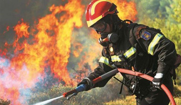 Συναγερμός στην πυροσβεστική – Μεγάλη φωτιά σε δασική έκταση στα Μέγαρα