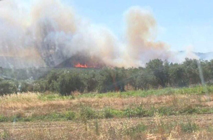 Οι εφιάλτες ξαναζωντανεύουν: Ανοίγουν πάλι οι φάκελοι για τις πυρκαγιές σε Κύθηρα και Μάνη