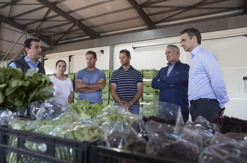 Κυρ. Μητσοτάκης: Πρωτοβουλίες για τη στήριξη των αγροτών
