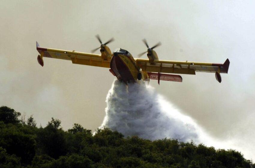 Πυρκαγιά σε δασική έκταση στον Βύρωνα Αττικής