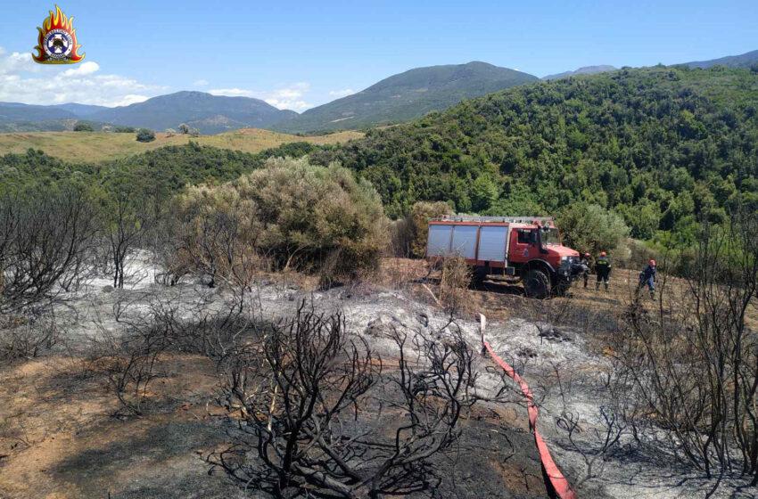 Οριοθετήθηκε η πυρκαγιά στην Κάρυστο – Υπό μερικό έλεγχο στην Αχαΐα