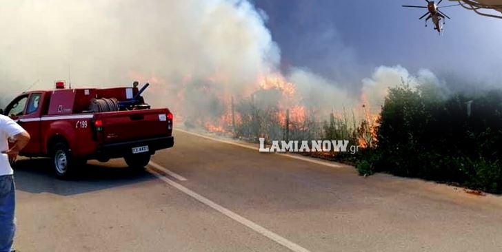 Μεγάλη φωτιά στο Μαρτίνο Φθιώτιδας – Οι φλόγες πέρασαν την Εθνική Οδό, διακοπή κυκλοφορίας (vid-εικόνες)