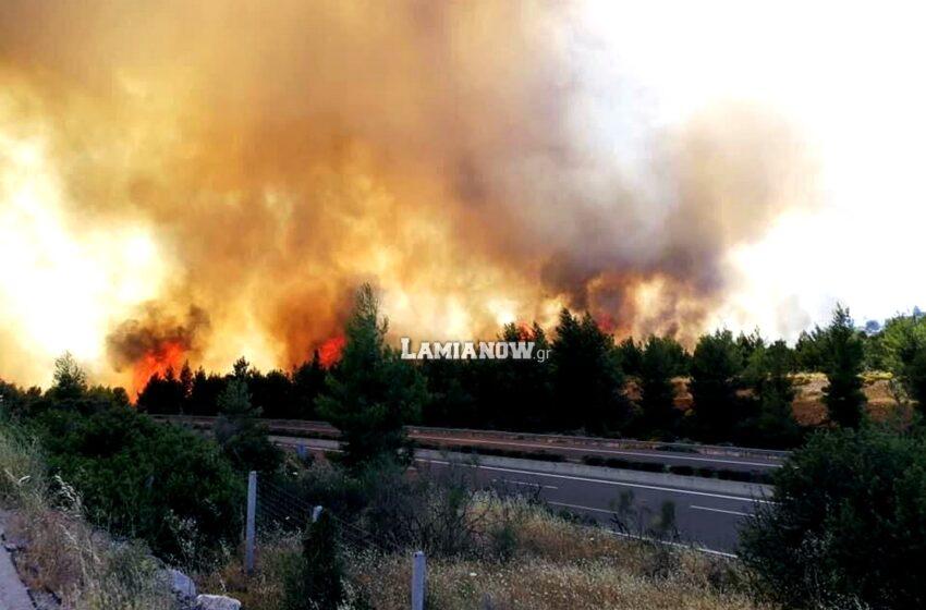 Υπό έλεγχο τέθηκε η φωτιά στο Μαρτίνο Φθιώτιδας – Άνοιξε η εθνική οδός