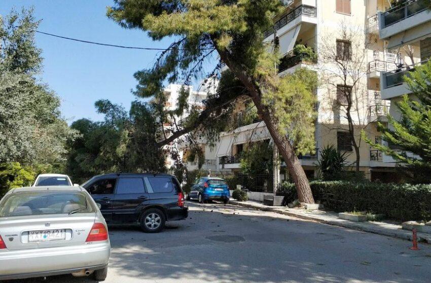 Διακοπή της κυκλοφορίας στη λ. Αμαρουσίου λόγω πτώσης δέντρου