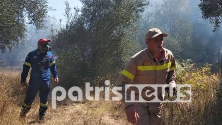 Μεγάλη φωτιά στην Ηλεία – Ενισχύονται οι δυνάμεις της Πυροσβεστικής
