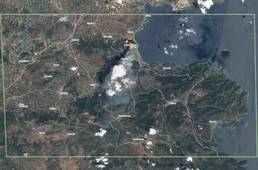 Εθνικό Αστεροσκοπείο Αθηνών: Τι έχει αφήσει πίσω της η πυρκαγιά στην Κορινθία