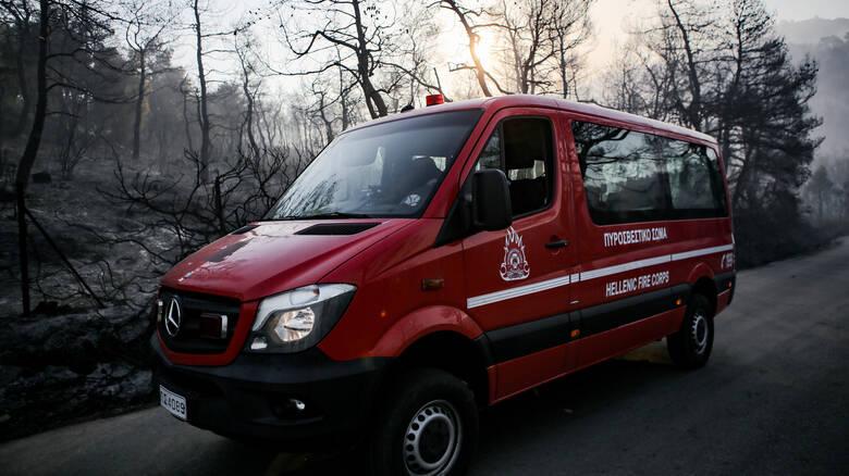 Εξήντα δύο πυρκαγιές το τελευταίο 24ωρο – Σε ύφεση η φωτιά στο Γραμματικό Ηλείας