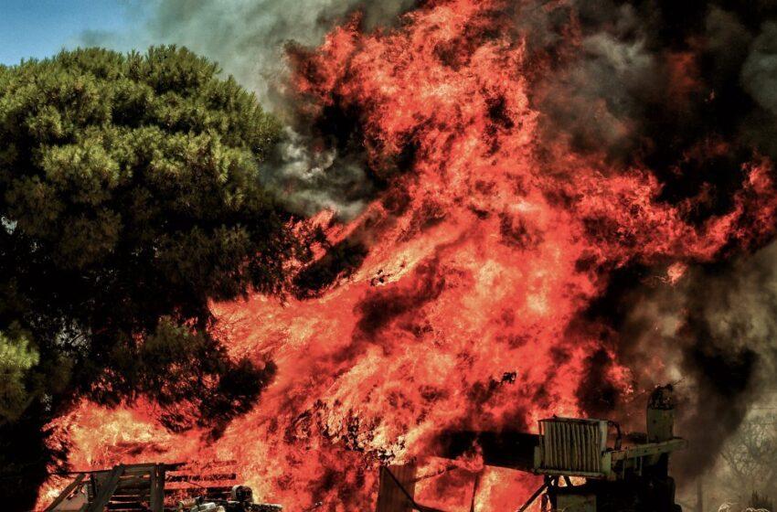 Κεχριές: Η φωτιά συνεχίζει το καταστροφικό της έργο – Συνεχείς αναζωπυρώσεις και μεγάλη μάχη