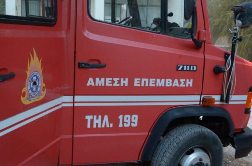 Φωτιά στη Λέσβο – Ισχυρή κινητοποίηση της πυροσβεστικής