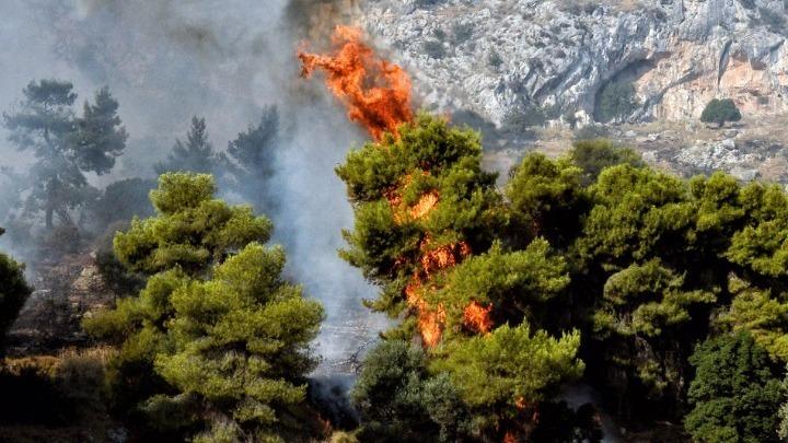 Πολύ υψηλός ο κίνδυνος πυρκαγιάς την Τετάρτη σε τέσσερις Περιφέρειες