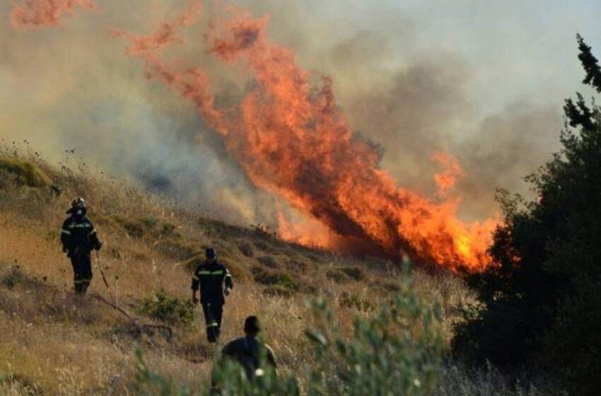 Μεγάλη φωτιά στην Επίδαυρο
