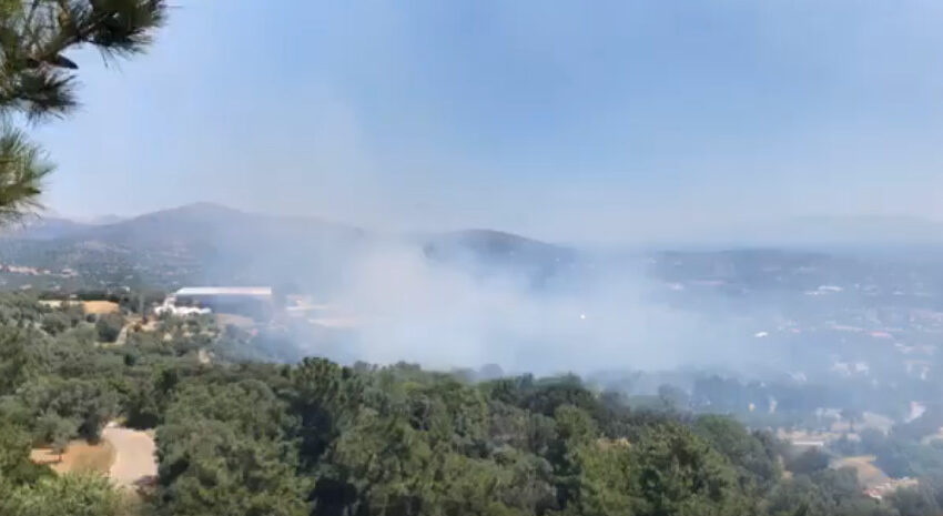 Μεγάλη φωτιά στη Χίο: Εκκενώνονται οικισμοί (vid)