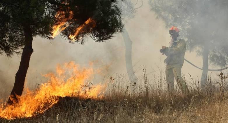 Αναζωπύρωση στη Νεμούτα- Μάχη πυροσβεστών και εθελοντών