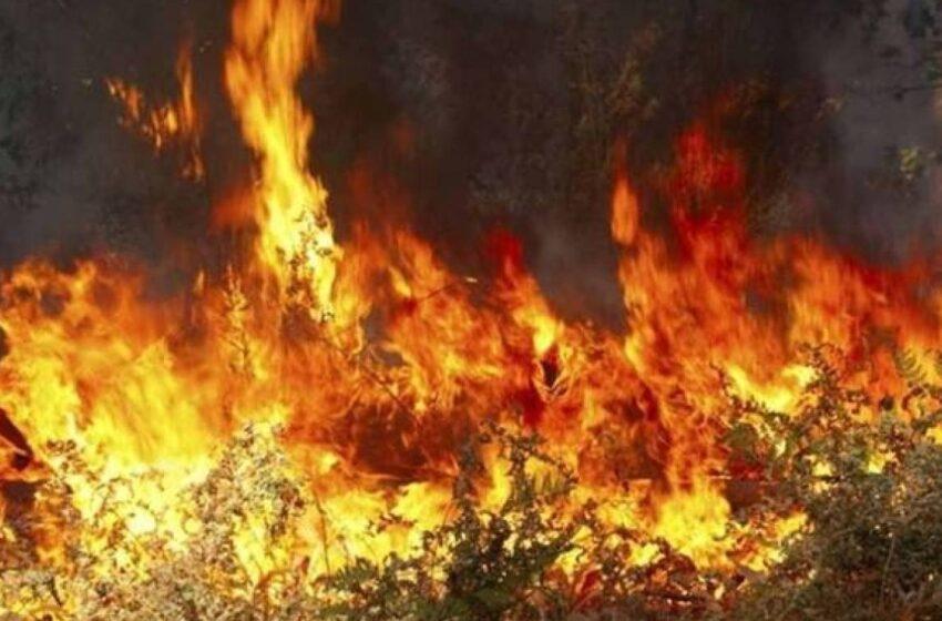 Πολύ υψηλός κίνδυνος πυρκαγιάς – Ανακοίνωση από τη ΓΓΠΠ (χάρτης)