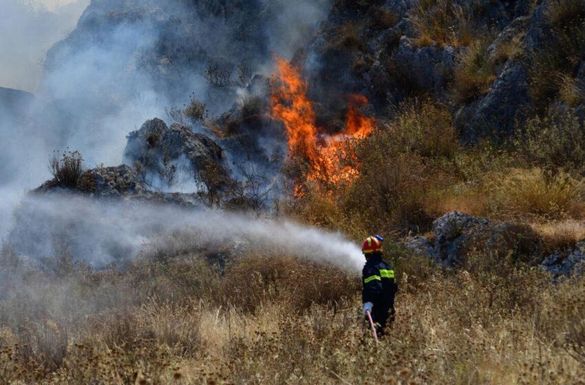 Πληροφορίες για νεκρό κοντά στην πυρκαγιά της Ηλείας