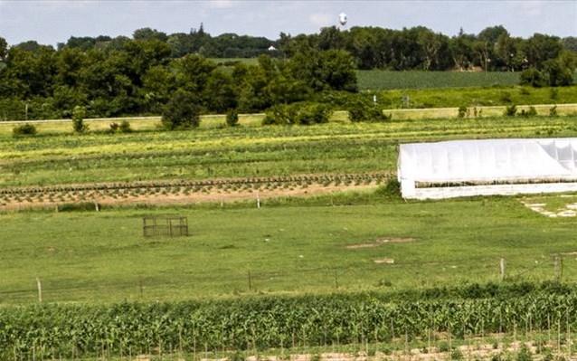 Θετικοί στον Covid-19 περισσότεροι από 70 εργάτες σε αγρόκτημα στην Αγγλία
