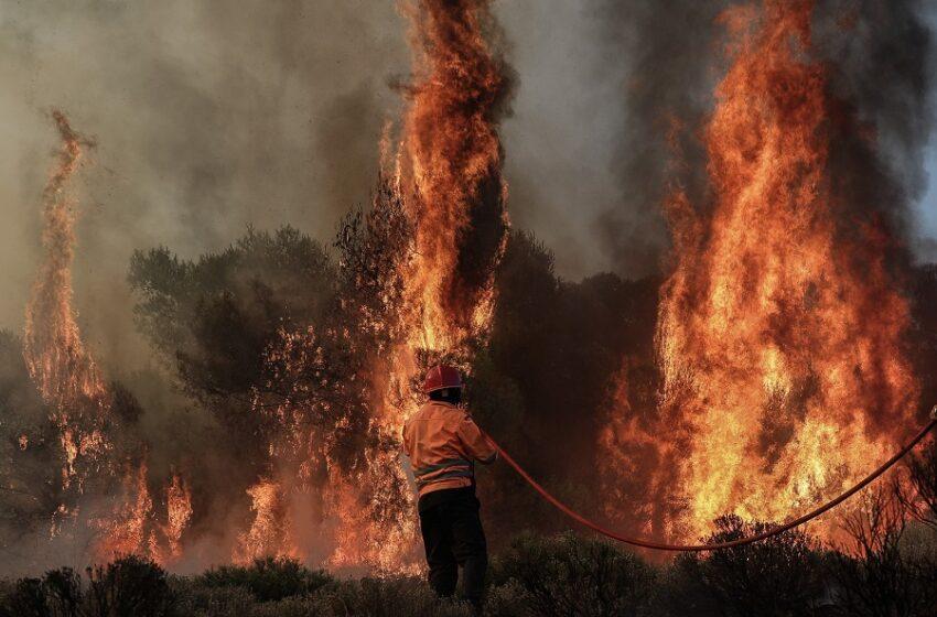 Συνεχίζεται η επιχείρηση της Πυροσβεστικής στη Νεάπολη Λασιθίου