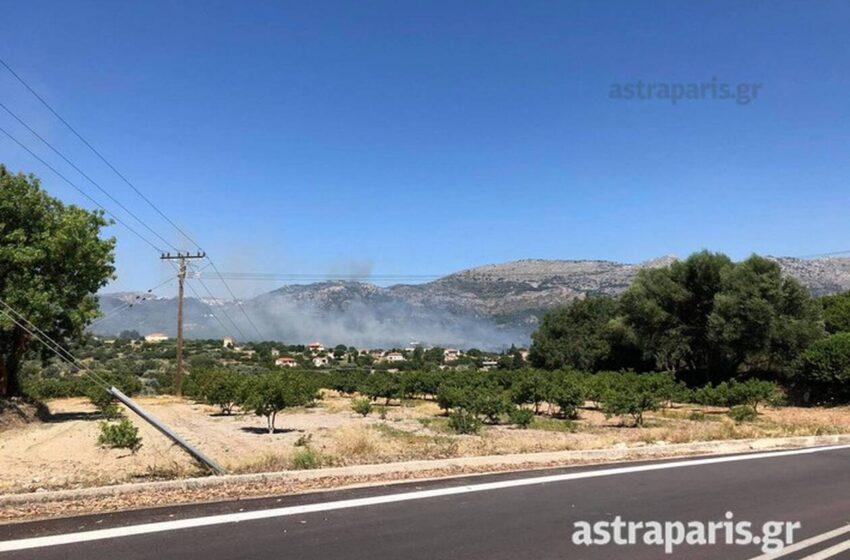 Φωτιά στη Χίο – Μεγάλη κινητοποίηση της πυροσβεστικής