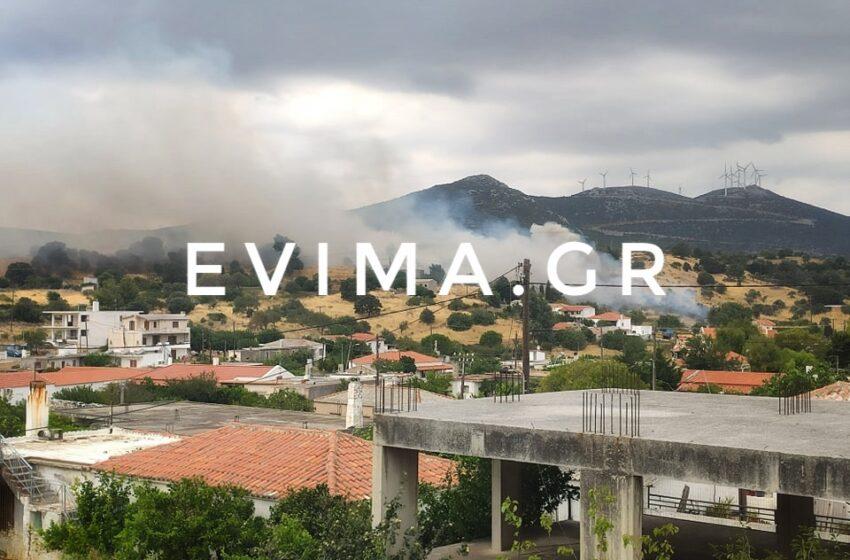Φωτιά στις Ζαράκες στην Εύβοια