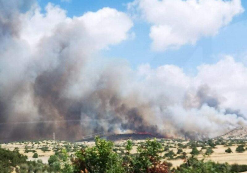 Κύπρος: Μεγάλη πυρκαγιά στο Πραστειό Αυδήμου (φωτό)
