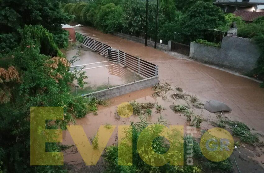 Τραγωδία στην Εύβοια – Δύο νεκροί από τις πλημμύρες – Καταστροφές σε σπίτια και μεγάλα προβλήματα (εικόνες, vid)