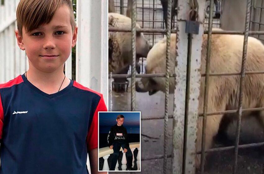Ασύλληπτη τραγωδία σε ζωολογικό κήπο: Αρκούδες κατασπάραξαν 11χρονο