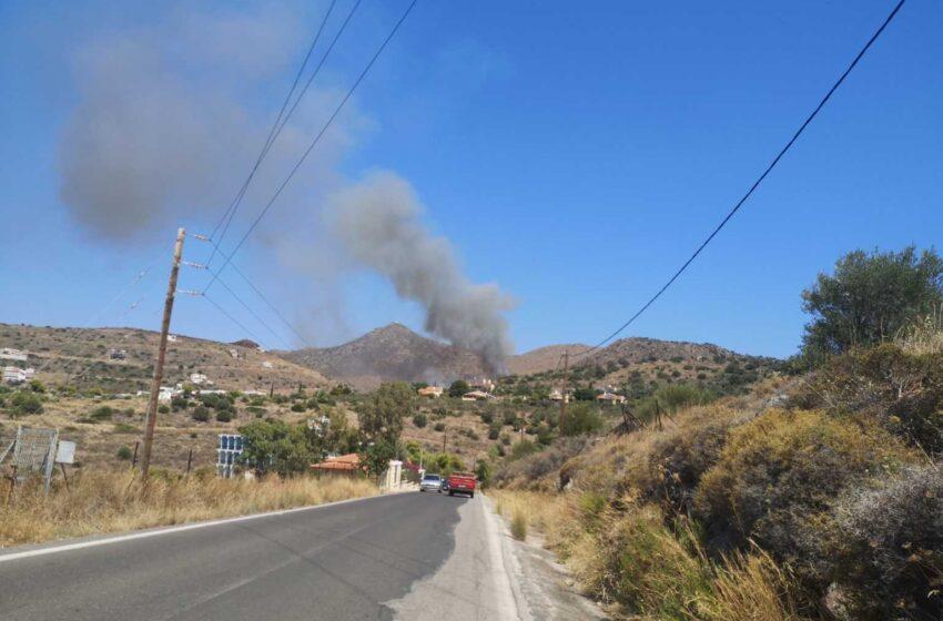 Φωτιά καίει δασική έκταση στην Αίγινα