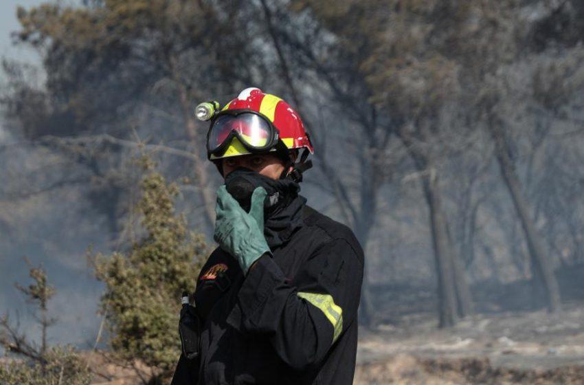Μεγάλη φωτιά-Σε εξέλιξη επιχείρηση της Πυροσβεστικής