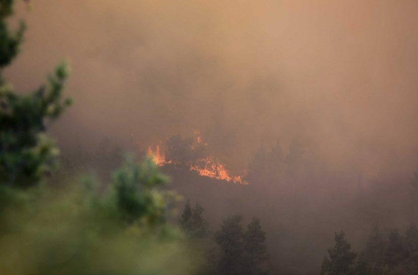 Λαυρεωτική: Υπό μερικό έλεγχο η πυρκαγιά στην περιοχή Βρομωπούσι