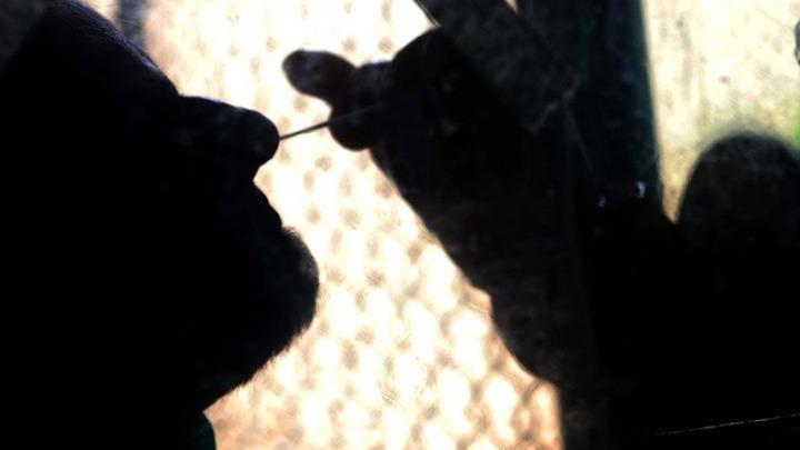 ΠΟΥ: Αρχίζουν έρευνες από τη Γουχάν για την προέλευση του κοροναϊού