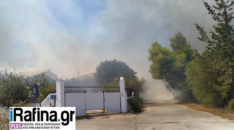 Ανεξέλεγκτη η φωτιά σε Ραφήνα/Αρτέμιδα: Εκκενώνεται οικισμός