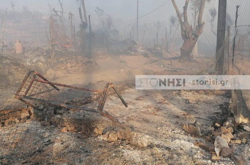 Εικόνες καταστροφής και ολέθρου στη Μόρια – Χιλιάδες στον δρόμο (εικόνες, vid)