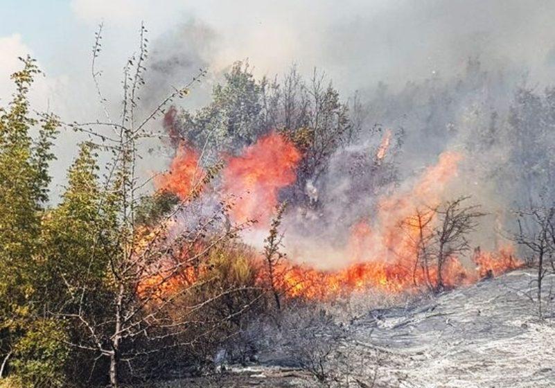 Μεγάλη φωτιά στον Έβρο (vid)