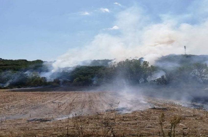 Μεγάλη φωτιά στον Έβρο – Σε κίνδυνο η Δαδιά
