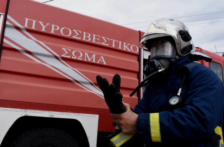 Φωτιά στη Ζήρεια Αχαΐας – Πάνω από 50 πυροσβέστες στο σημείο