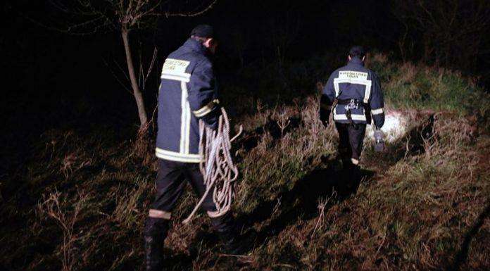 Εξαφανίστηκαν δύο νεαροί που βγήκαν να μαζέψουν μανιτάρια – κινητοποίηση της Πυροσβεστικής