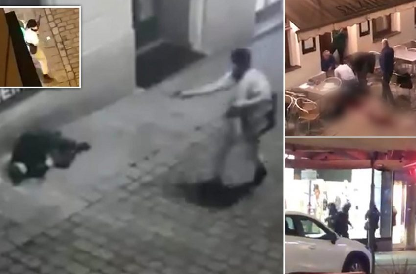 Βίντεο σοκ: Η στιγμή της τρομοκρατικής επίθεσης στη Βιέννη – Τρεις νεκροί πολίτες, 17 τραυματίες εκ των οποίων 7 σοβαρά (vid)