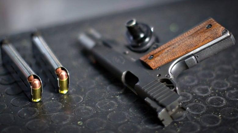 Κατασχέθηκαν όπλα που προορίζονταν για Γερμανούς ακροδεξιούς εξτρεμιστές στην Αυστρία