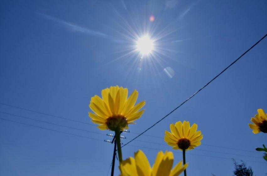 Αρναούτογλου: Ανοίγει ο καιρός, ανεβαίνει η θερμοκρασία