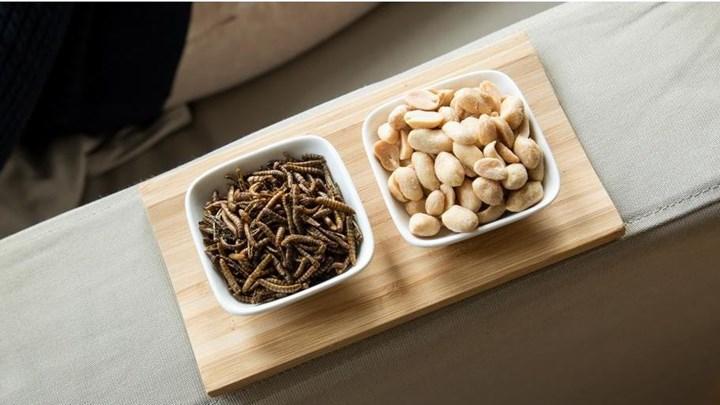 """Ε.Ε: """"Ναι"""" στα έντομα στο… πιάτο μας"""
