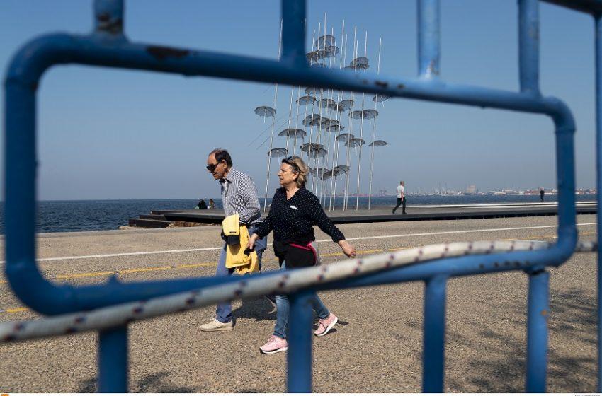 Μεταλλαγμένοι ιοί από μινκ πέρασαν σε ανθρώπους στη Βόρεια Ελλάδα;- Τι υποστηρίζουν οι επιστήμονες