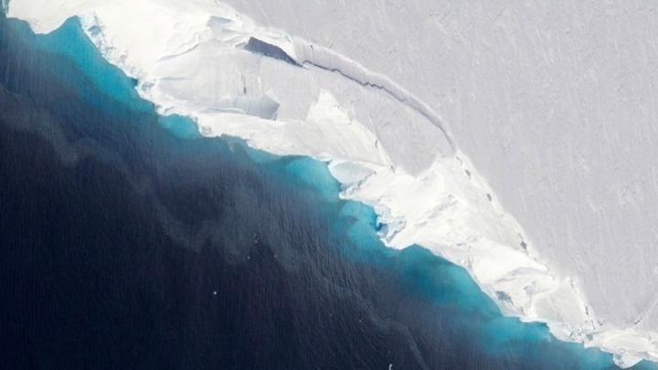 Ανακάλυψαν παράξενα πλάσματα κάτω από τους θαλάσσιους πάγους της Ανταρκτικής