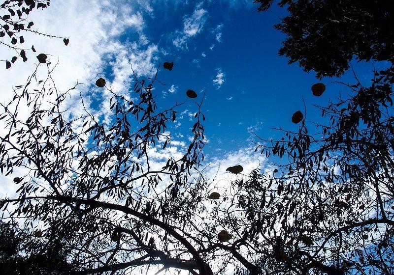 Καύσωνας την Κυριακή του Πάσχα – Πού  αναμένονται θερμοκρασίες- ρεκόρ