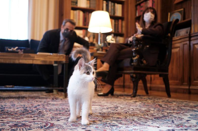 "Le Soir για Κουφοντίνα: Επισημαίνει την ""σιωπή"" της ΠτΔ- ""Προκαλεί ανησυχία η στάση της κυβέρνησης"""