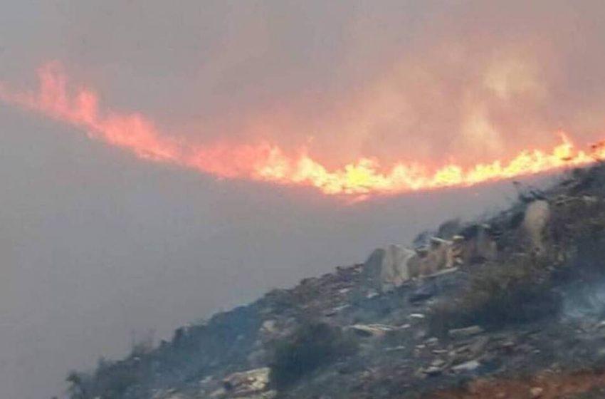 Ενισχύονται οι πυροσβεστικές δυνάμεις στην Άνδρο – Πήρε διαστάσεις η φωτιά
