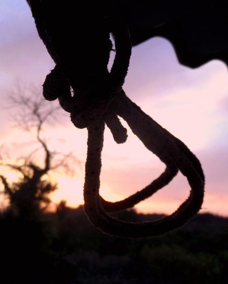 Σοκ στα Χανιά: 55χρονος βρέθηκε κρεμασμένος σε δέντρο