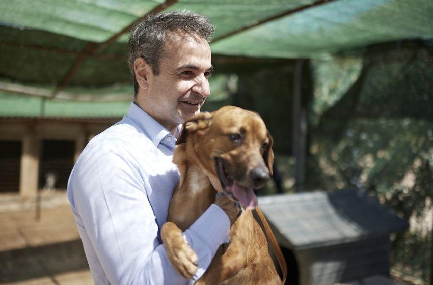 Επίσκεψη Μητσοτάκη στο καταφύγιο αδέσποτων ζώων (vid)