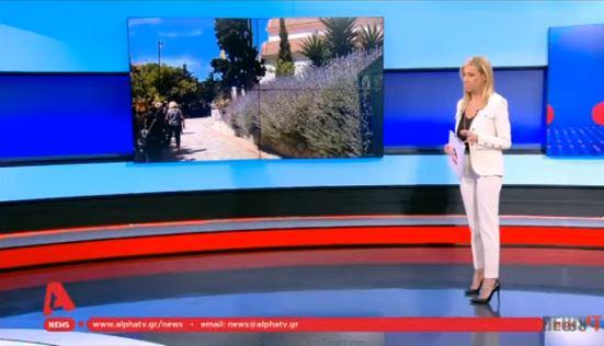 """""""Λύγισε"""" στον αέρα η Έφη Αλεβίζου με τις εικόνες από την Αλόννησο (vid)"""